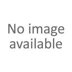 Anagrama adhesivo Montesa wolrd trial champions ref.AM2503